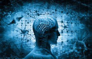 Understanding the Addicted Brain